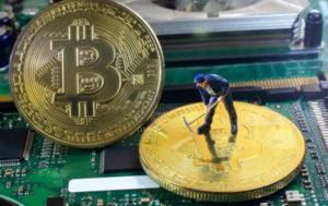 В Крыму чиновники майнили криптовалюту в здании правительства