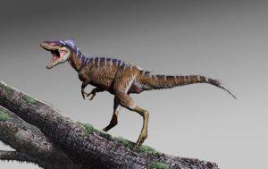 Ученые нашли останки мини-тираннозавра