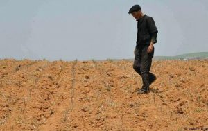 Северная Корея просит ООН помочь с продовольствием