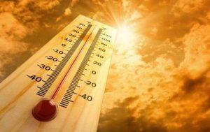 Глобальное потепление: 2018 год стал самым жарким