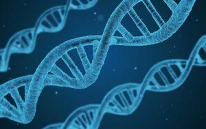 Ученые выделили гены, связанные с развитием шизофрении